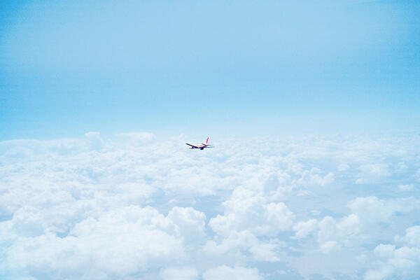 requests data in the travel industry - flying plane